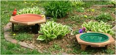 Classic Garden Bird Bath