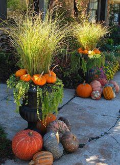 Fall container gardens ideas 90