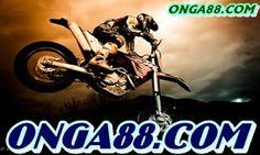 Today my dear friend Federico and I have taken some shot to Motocross racing. Motocross Maschinen, Dirt Bike Girl, Girl Bike, Fox Racing, Dirtbikes, Rally Car, Big Trucks, Bike Life, Cool Bikes