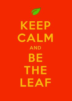 The Legend of Korra. Keep Calm and Be The Leaf.