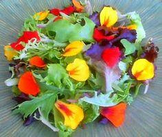 Food Wishes Video Recipes: The Nasturtium Salad - Pretty Delicious