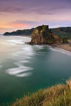 Lion Rock, Piha Beach, near Auckland when it's clam