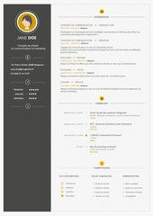 Cv professeur cole formation cv pinterest cv template avec police arial yelopaper Images