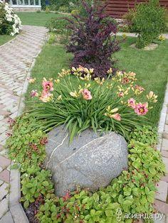 А у нас во дворе и огороде. часть 2: Дневник пользователя dulta
