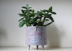 Large short tripod planter