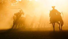 Horsemen in Hortobagy , Hungary Budapest, Kagawa, Dawn And Dusk, Antelope Canyon, Countryside, Beautiful Places, To Go, Asia, Fan Art