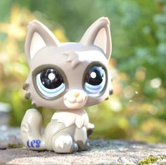 This LPS cat is so cute. Lps Littlest Pet Shop, Little Pet Shop Toys, Little Pets, Lps Toys For Sale, Custom Lps, Lps Accessories, Lps Cats, Warrior Cats, Grumpy Cat