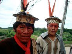 indios ashaninka