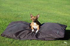 Rambo Pillow Dog Bed