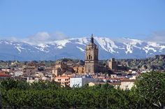 Guadix - view and cathedral