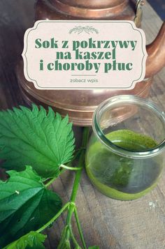 Kind Und Kegel, Food Hacks, Health And Beauty, Menu, Herbs, Recipes, Syrup, Health And Fitness, Medicine