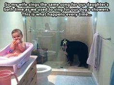 Funny Friday Pictures Of The Day - 55 Pics Funny Dogs, Funny Animals, Cute Animals, Animal Funnies, Friday Pictures, Funny Pictures, Funniest Pictures, Funny Cute, The Funny