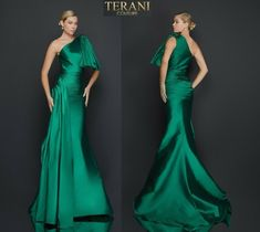 TERANI COUTURE 2011E2044 authentic dress. FREE FEDEX. BEST PRICE   eBay One Shoulder Gown, Terani Couture, Types Of Sleeves, Formal Dresses, Free, Ebay, Fashion, Dresses For Formal, Moda