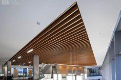 Slatted-wood ceiling panels - Cerca con Google