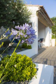 9 Meilleures Images Du Tableau Idee Jardin Gardens