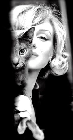 Marylin and her cat love this pict of her - #marylin #kitty #iconic #portrait
