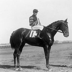 Man o' War - After victory in the Belmont Futurity, his final start as a 2-year old.