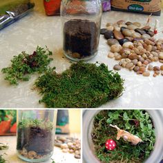 Materials:  • Glass mason jar with lid (I used an old spaghetti sauce jar)  • Potting soil  • Activated charcoal (sometimes called terrarium charcoal)  • Small stones, pebbles, or gravel  • Sheet moss (sometimes called preserved sheet moss)  • Decorations (such as small toys, larger rocks, etc.)  • Chopsticks or bamboo skewers  • Spray paint (if desired)