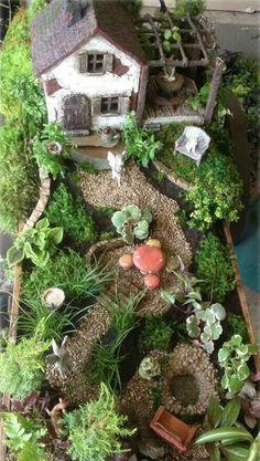 Sweet fairy garden!