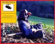 Foto sacada de la pagina de Castriño de Rebordechán.