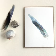 Blue Feather Note Card Set