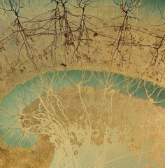 Greg Dunn created this series of sumi-e style paintings all based on the brain's anatomy while he was a PhD neuroscience student.