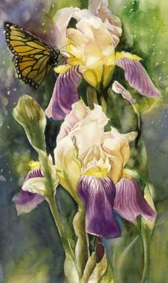 """ARTFINDER: visit by the monarch by Alfred  Ng - original watercolor painting on arches watercolor paper, 12""""x20"""""""