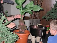 Nothing like a real mandrake baby (use a doll and fake plants to create your own)