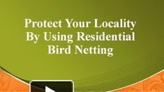 Protect Your Locality By Using Residential Bird Netting Bird Netting, Ppt Presentation, Pigeon, Clean House, Birds, Free, Bird