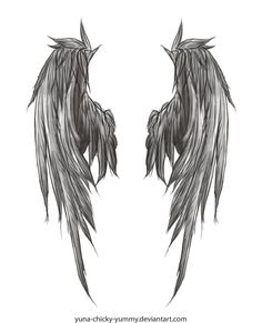 Angel wing drawing I found in deviantart. I'll probably get this tattooed.