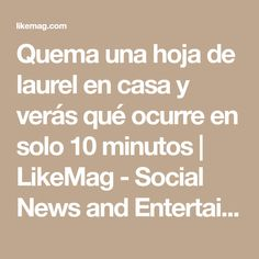 Quema una hoja de laurel en casa y verás qué ocurre en solo 10 minutos | LikeMag - Social News and Entertainment