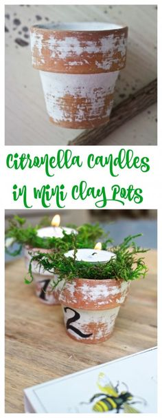 Citronella Candles in Mini Clay Pots. Numbered clay pots. Mini terra cotta pots. Outdoor pots. Keep mosquitoes away with citronella candles. Clay pots. Moss in pots.