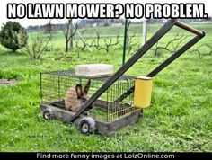 Gardening Humor: Eco-friendly lawn mower
