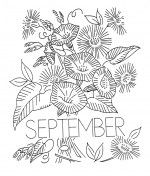 Flower_of_the_Month-9-Sept