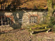 Alte rustikale Holzbank vor einem Bauernhaus in Hagen bei Lage in Ostwestfalen-Lippe