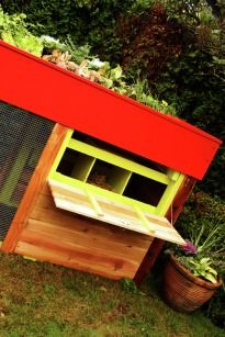 green roof chicken coop.  If this was on wheels it would be perfect