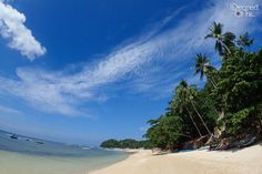 Beach - Easy Diving and Beach Resort - Sipalay, Negros - Philippines