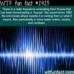 "Radio Frequency from Russia - I don't think this is so much ""fun"" as it is WTF. Wtf Fun Facts, True Facts, Funny Facts, Random Facts, Odd Facts, Creepy Facts, Pointless Facts, Strange Facts, Creepy Stuff"