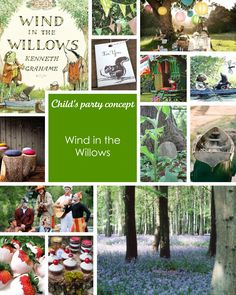 Wind in the Willows- a child's party concept!