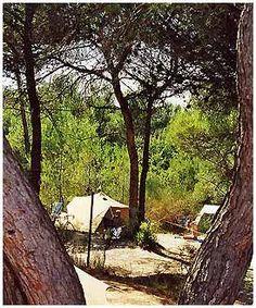 Camping Vaison la Romaine : l'Ayguette - Camping locations en Provence Vaucluse