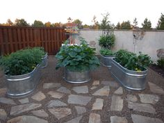 1000 Images About Gardening On Pinterest Stock Tank