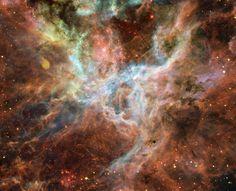 Der Tarantelnebel ist ein Gasnebel, der sich in der Großen Magellanschen Wolke befindet, einer unserer Nachbargalaxien. Unzählige Sterne werden hier geboren. Der Nebel ist das größte Sternenentstehungsgebiet der Großen Magellanschen Wolke.