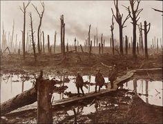 WW1, The Shell-Shattered Area of Chateau Wood, Flanders, 1917, by Frank Hurley