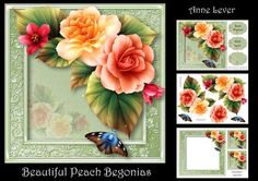 Beautiful Peach Begonias on Craftsuprint designed by Anne Lever - This lovely mini kit makes an 8x8 square topper with decoupage, two greetings, a blank greetings tile, two gift tag toppers and a matching insert. It features gorgeous peach and yellow begonias on an embossed frame. - Now available for download!