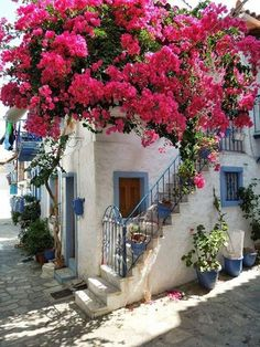 Bougainvillea at Skiathos, Greece Mykonos, Cadaques Spain, Girona Spain, The Places Youll Go, Places To Visit, Beautiful World, Beautiful Places, Photos Voyages, Greece Travel