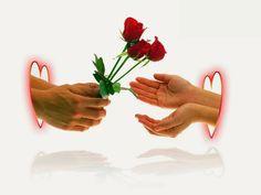 "Photo from album ""Гостевые"" on Yandex. Buy Flowers Online, Background Images Hd, Good Morning Love, Same Day Flower Delivery, Album, Beautiful, Yandex Disk, Krishna, Google"