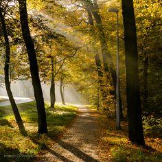 Morning Light rays #2 by reznor666.deviantart.com on @deviantART