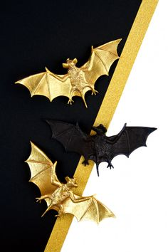 Top View Of Halloween Decoration With Plastic Bats Halloween Vector, Halloween Party, Halloween Decorations, Diy Pumpkin, Top View, Bats, Free Photos, Photo Editing, Photoshop