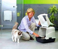 Туалеты для кошек закрытые: выбираем комфорт для животного и чистоту для дома  Смотри больше http://kot-pes.com/tualety-dlya-koshek-zakrytye-vybiraem-komfort-dlya-zhivotnogo-i-chistotu-dlya-doma/