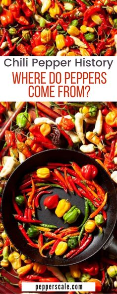 Chili peppers are used globally in a wide variety of cuisines thanks to their intense heat and flavor. They are consumed by over a quarter of the world's population daily, yet few know their origin, and those that think they do are often only partially correct. So, where do peppers come from?